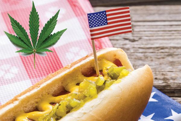 Flag pot leaf